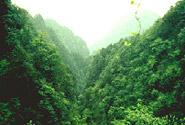Keindahan Panorama Gunung Emei, termasuk Kawasan Buddha Raksasa Leshan.