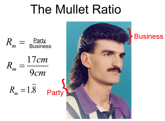 Mullet Party Bar Parker Restaurant Sports Bar Bar And Grill