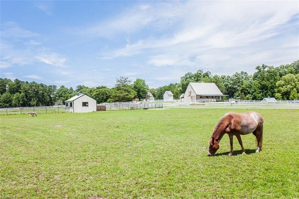 horses, pasture
