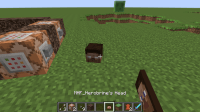 Herobrine Head in Minecraft!!!! - Discussion - Minecraft ...