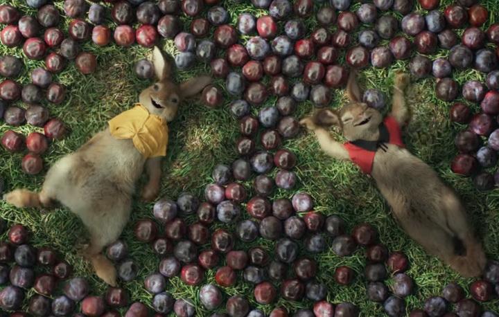 peter_the_rabbit_t2