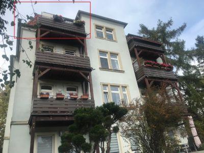 Wohnungen in Dresden BhlauWeier Hirsch bei immoweltde