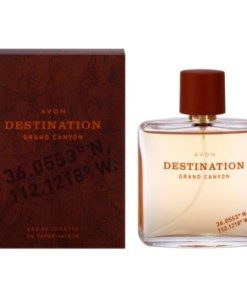 Avon Destination Grand Canyon eau de toilette pentru barbati 75 ml