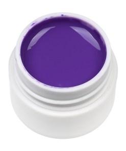 Gel UV Color ENS PRO #036 - Aubergine