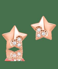 Cercei stelute din aur roz de 14K 15601