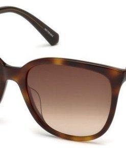 Swarovski Damen Sonnenbrille »SK0146-H« braun