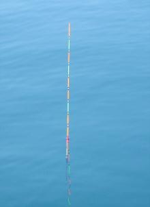海面が静かな海に浮かぶ棒ウキ