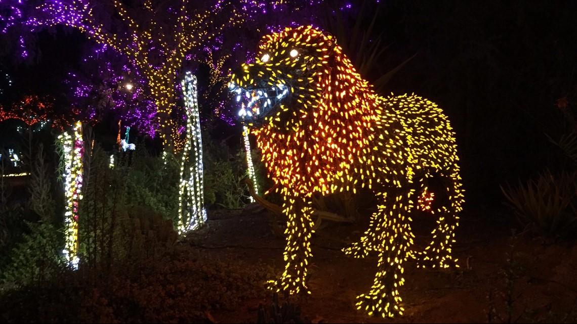 Zoo Lights Phoenix Arizona
