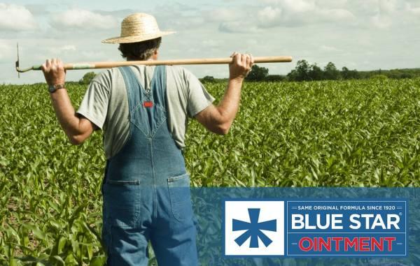 Blue Star Ointment Phone 888-844-4043 San Antonio