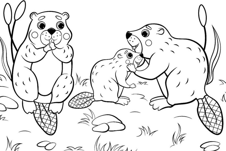 Animal Families Coloring Pages: Free & Fun Printable