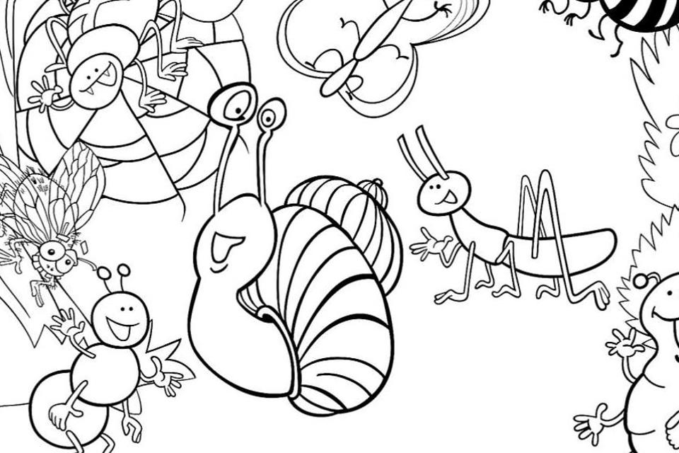 Insect Coloring Pages: Free & Fun Printable Coloring Pages