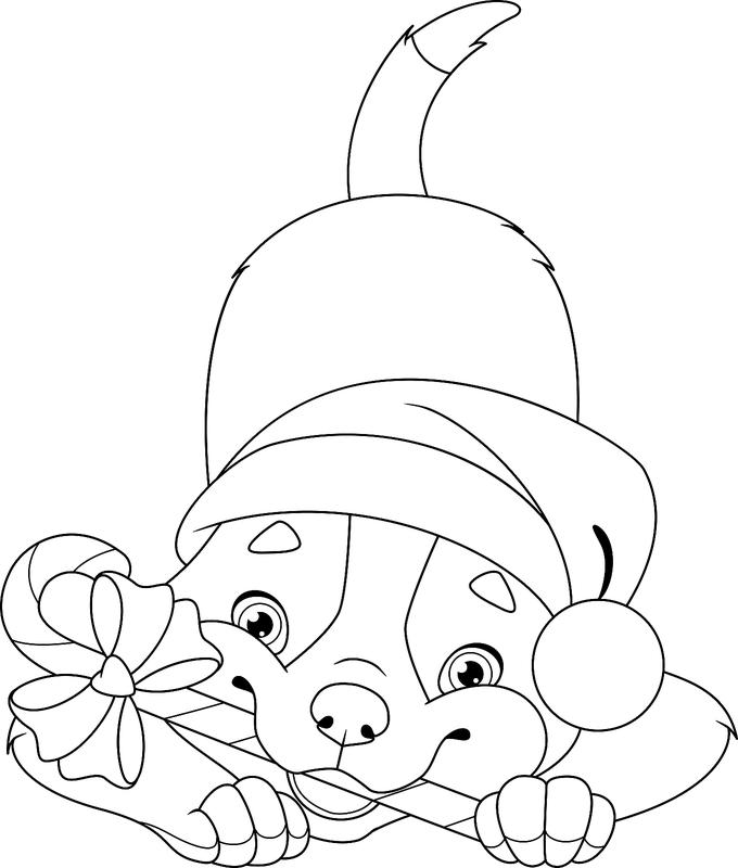 Christmas Coloring Pages for Kids & Adults: 16 Free