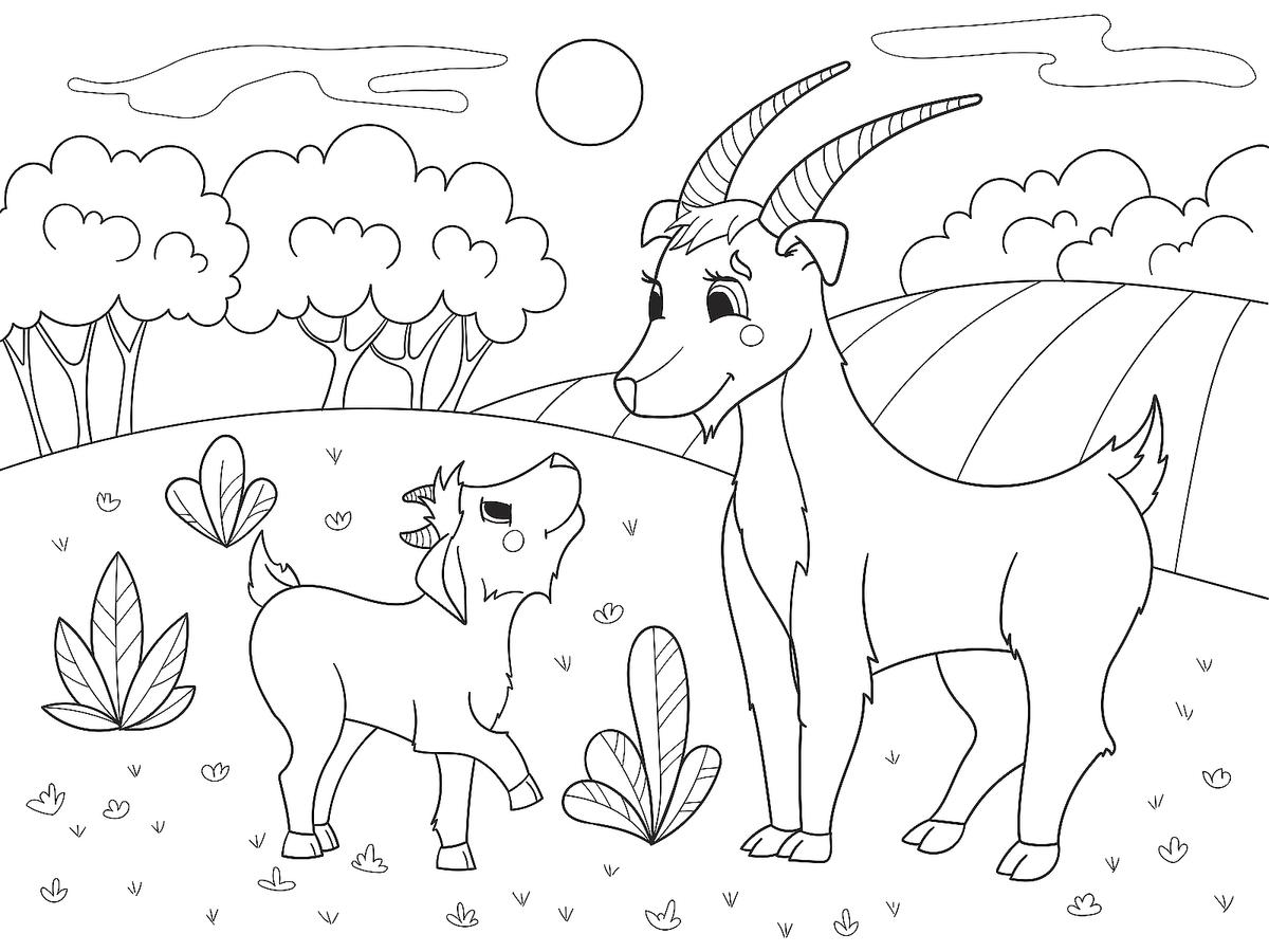 Animal Families Coloring Pages Free Amp Fun Printable