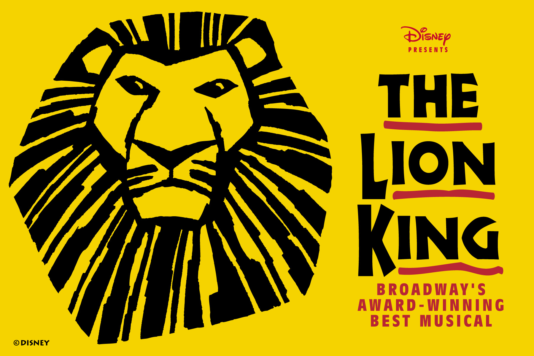 Image result for the lion king broadway