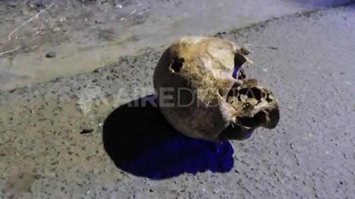 En un principio, se cree que el cráneo fue encontrado por personas en situación de calle que se acercaron a revisar la basura.