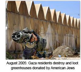 gaza-myths-2-greenhouse-destruction.jpg