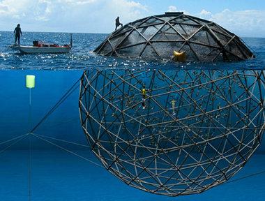 offshore-fish-farming.jpg