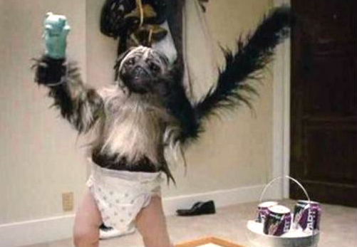 Image result for puppy monkey baby commercial