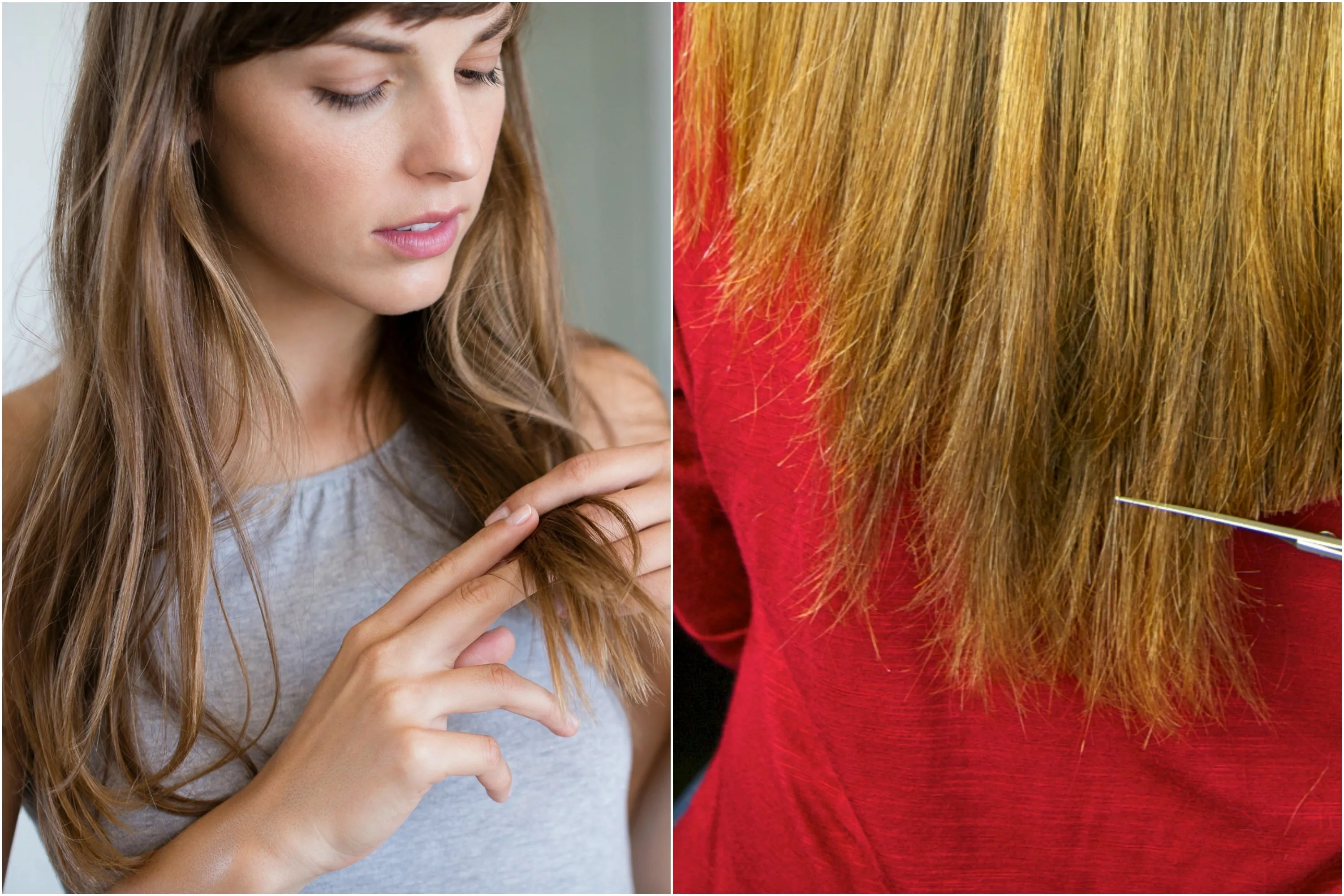 Hair Breakage 10 mon Causes and How to Fix Them