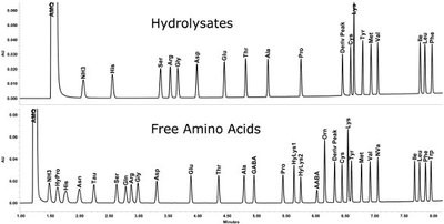 Application of UPLC Amino Acid Analysis Solution to Foods