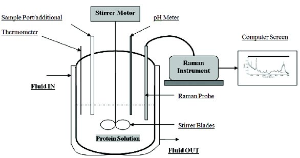 Use of In-line Raman Spectroscopy as a Non-destructive and