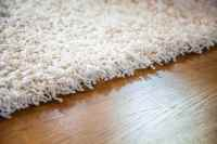 Frazee Carpet - Carpet Vidalondon