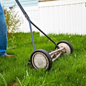 How Much Does Lawn Mowing Cost  Angies List
