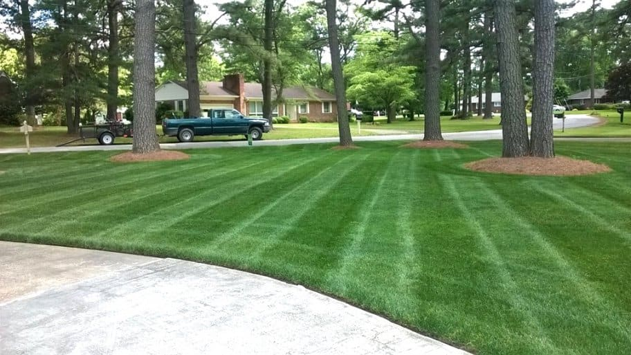 spring lawn care and landscaping