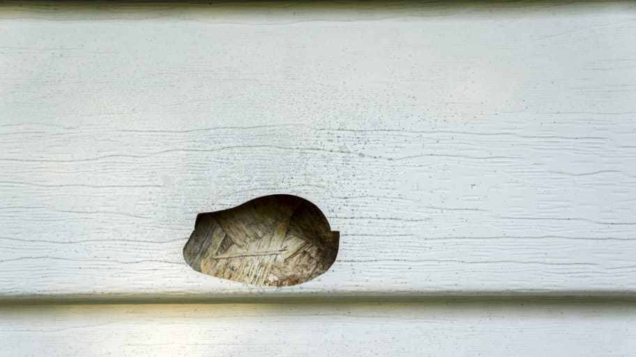 How Do I Repair a Hole in Vinyl Siding  Angies List