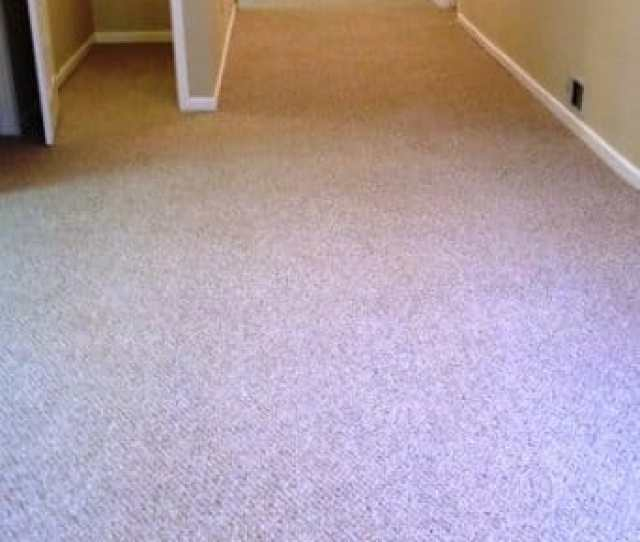 Which Berber Carpet Is Best For Your Basement