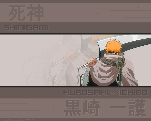 Bleach Anime Wallpaper #47
