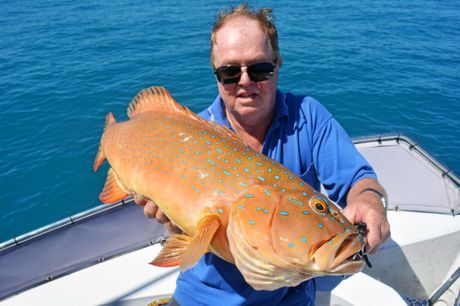 FAT TROUT: Dean Allen with a pig of a trout that measured 69cm caught while fishing with Reel Addiction Fishing Charters.