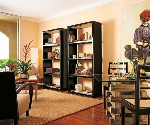 Two Tone Painted Bookshelves