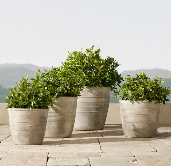stylish outdoor planters