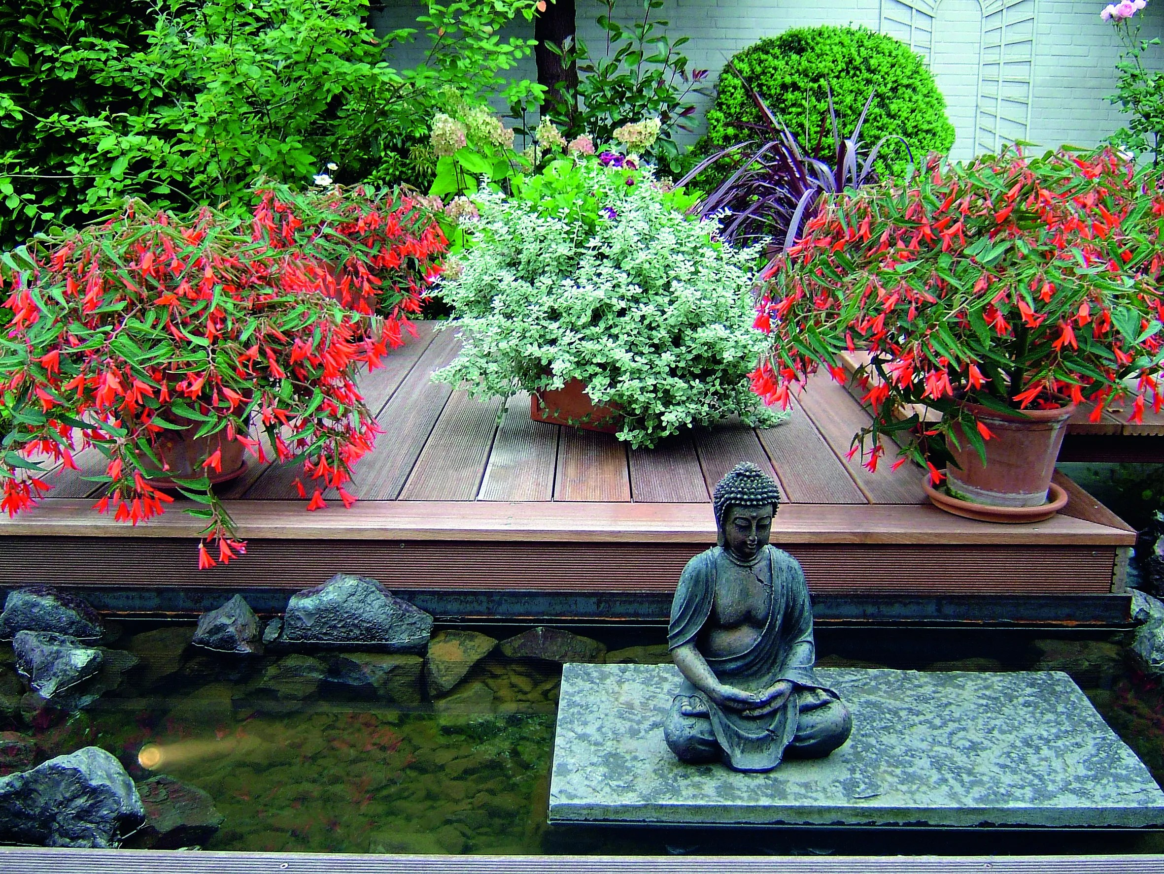 container gardening tips for your