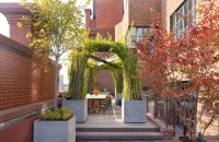 Potted Plant Ideas to Elevate Your Outdoor Space Photos ...