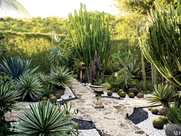homes feature plants
