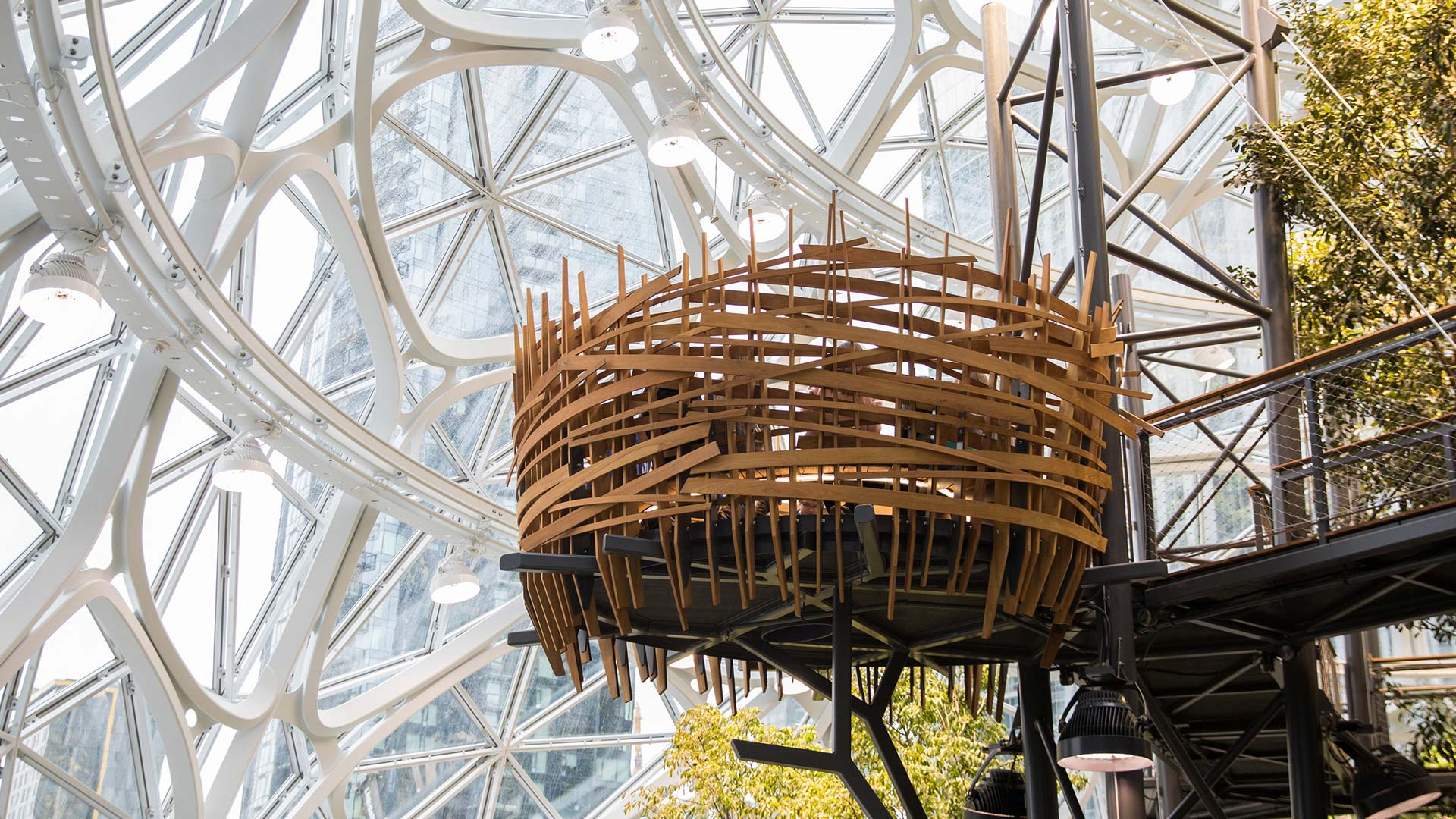 Amazon creates a rainforestlike office space at its