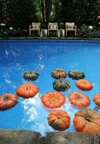 Home: Freshen up fall