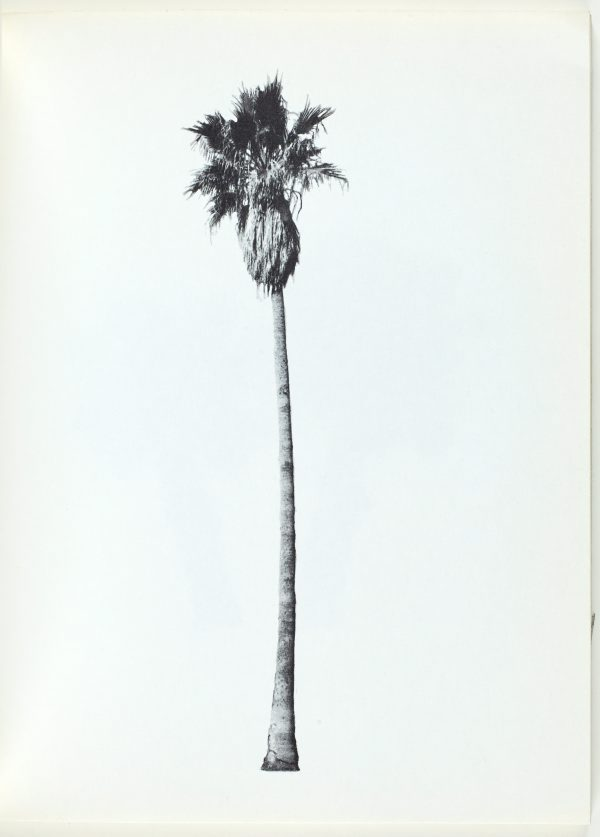 A few palm trees, (1971) by Edward Ruscha :: The