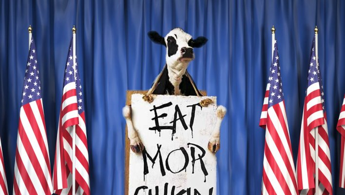 Chick-Fil-A Cow Announces 2020 Run On Popular Platform Of Eating More  Chicken | The Babylon Bee