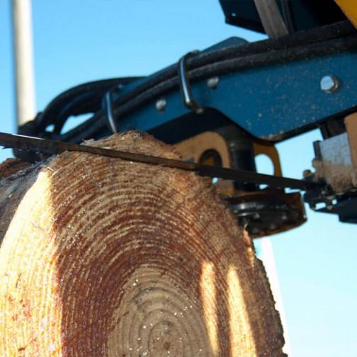 Lenox Woodmaster C