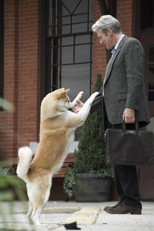 Hachi: A Dog's Tale - DVD Image