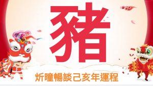 炘曈暢談2019己亥年運程-肖豬篇 | 博客文章