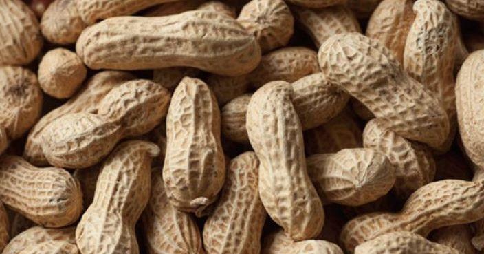 食花生好處多 有助穩定血糖護心臟 | 生活事 | 巴士的報