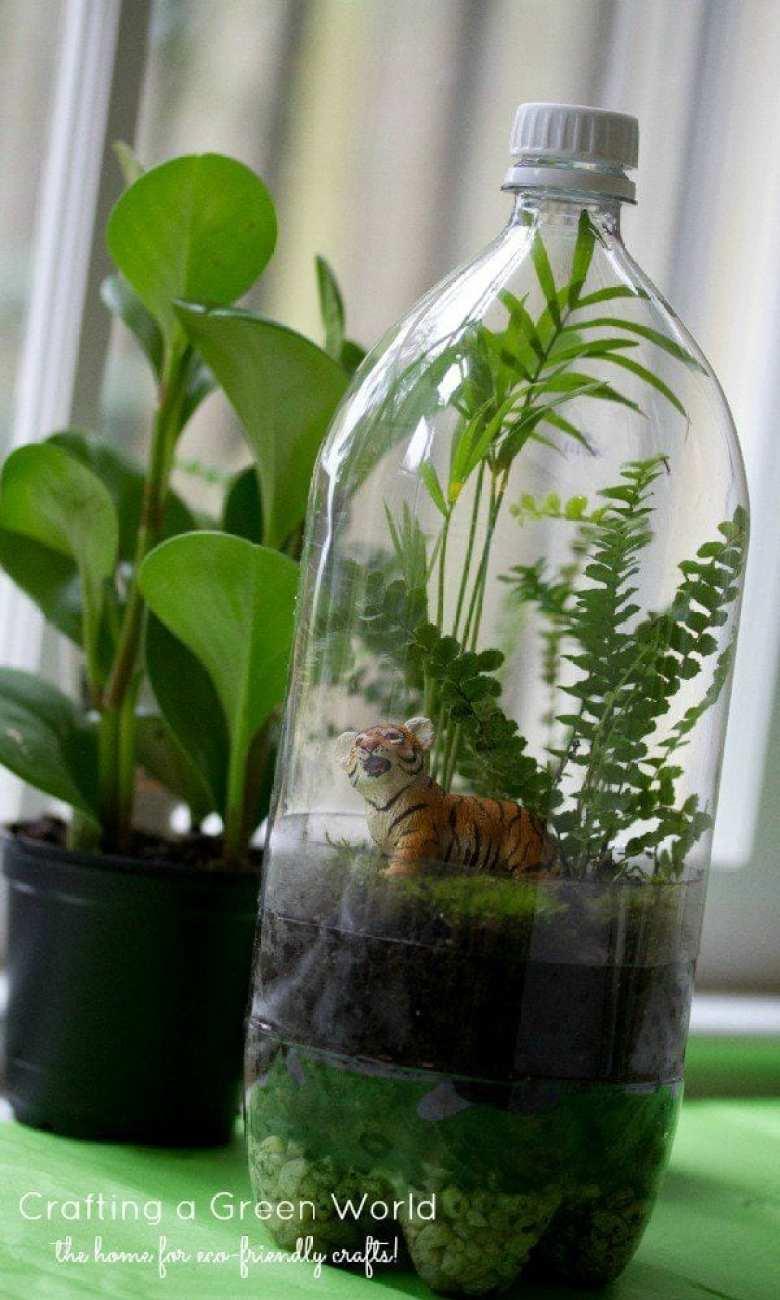 terrarium, pyssel, växter, djungeldjur, återbruk, PET-flaska, pysseltips