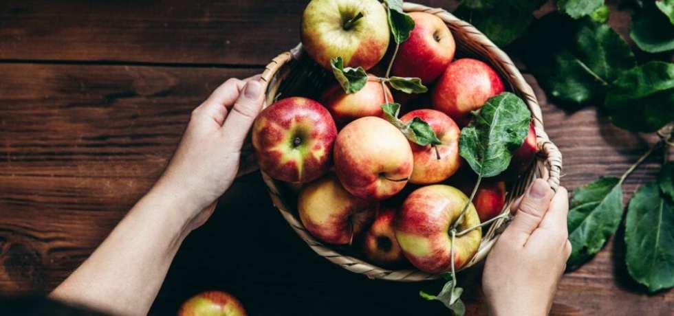 5 goda saker att göra av apple
