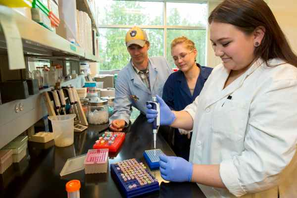 Alternative Stem Programs Offer Early Career Preparation