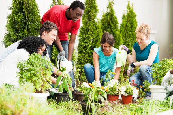 High School Agriculture Education
