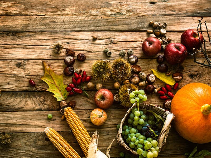 Traditional Sukkot Recipes To Try Sukkot Customs And